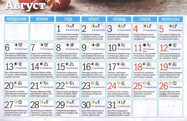 Календарь садовода огородника на август 2018