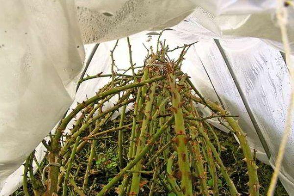 Спанбонд или лутрасил – продукт расплавленного полимера