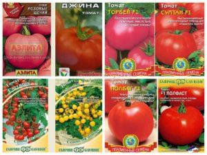 Семена различных сортов томатов