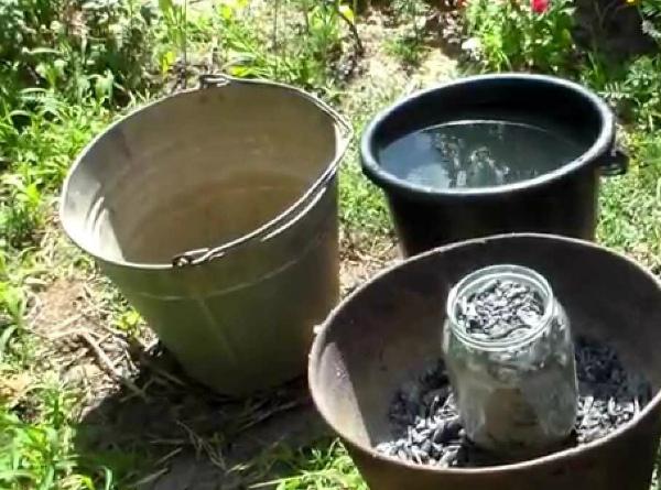 Древесная зола в качестве удобрения для огурцов