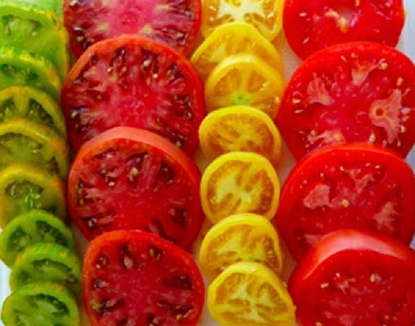 Несколько разных сортов томата