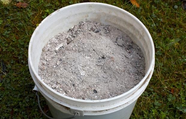 Древесная зола для подкормки почвы