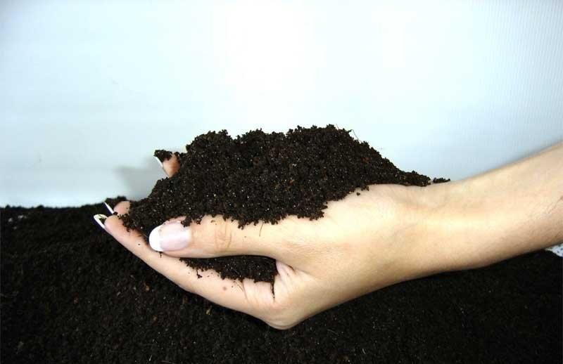 Обработанная и обеззараженная почва