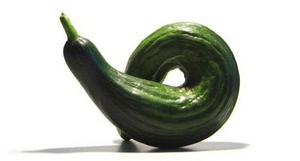 Деформированные плоды огурца могут иметь самую причудливую форму