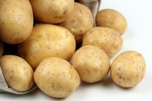 Высокоурожайный сорт картофеля Адретта