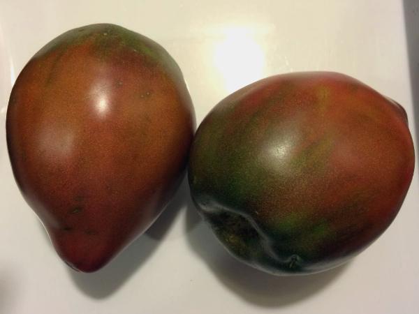 Черные плоды томатов Бычье сердце