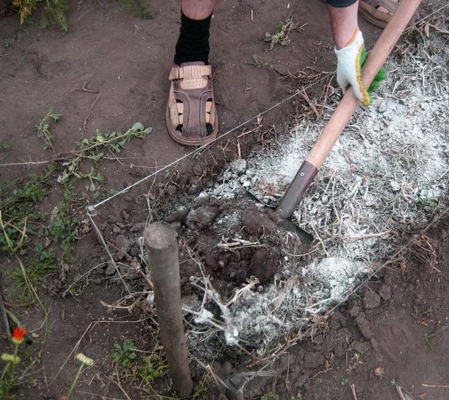 Фото процесса раскисления почвы