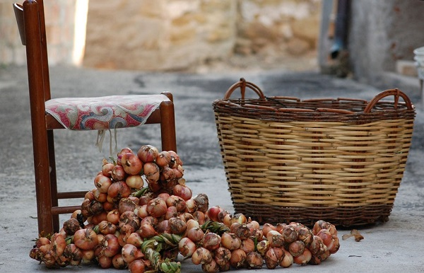 Урожай лука возле корзины