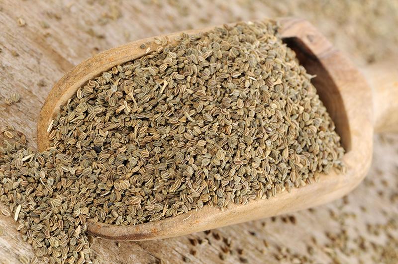 Семена сельдерея на лопатке