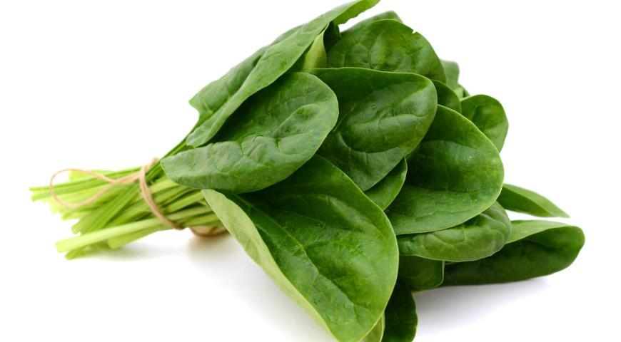 Пучок листьев шпината