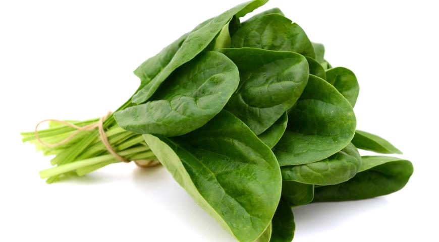 Пучок зеленого шпината
