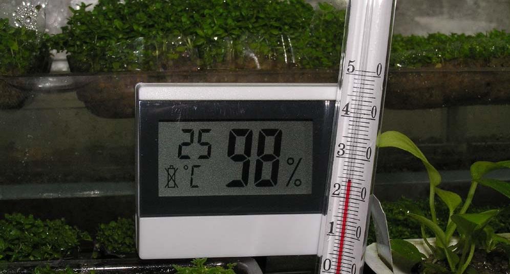 Влажность воздуха в теплице