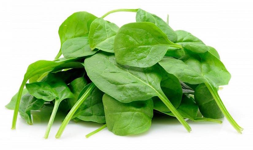 Свежий шпинат, который сразу можно употреблять в пищу