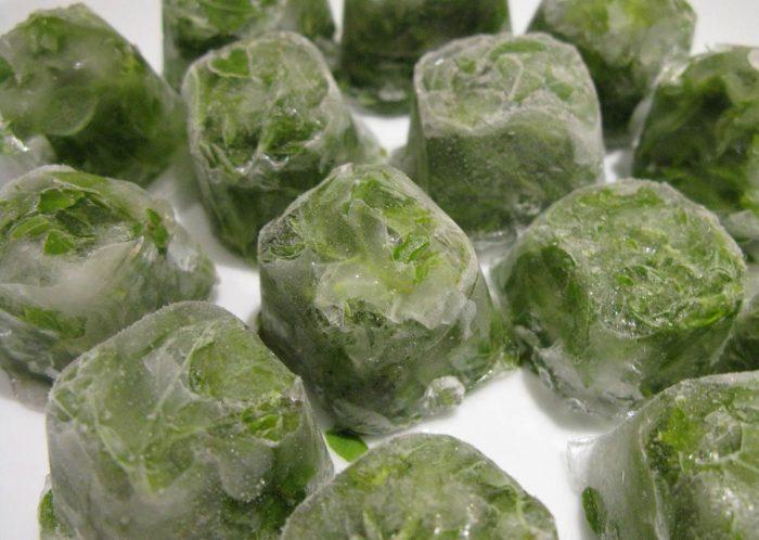 Замороженные листья базилика