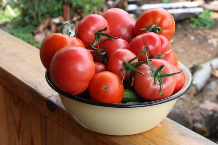 Зрелые томаты, лежащие в миске