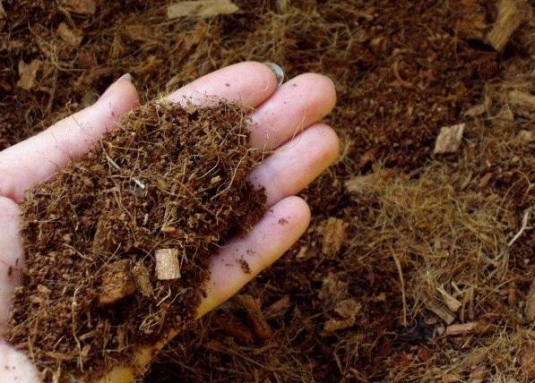 Субстрат, для выращивания клубники