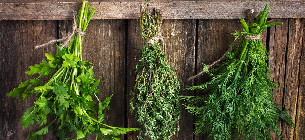 Сушка зелени в пучках