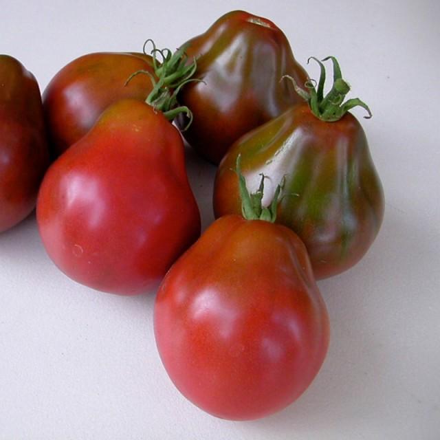 Внешний вид томата Трюфель