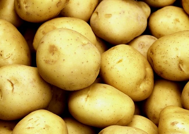 "Сорт картофеля ""Тулеевский"""