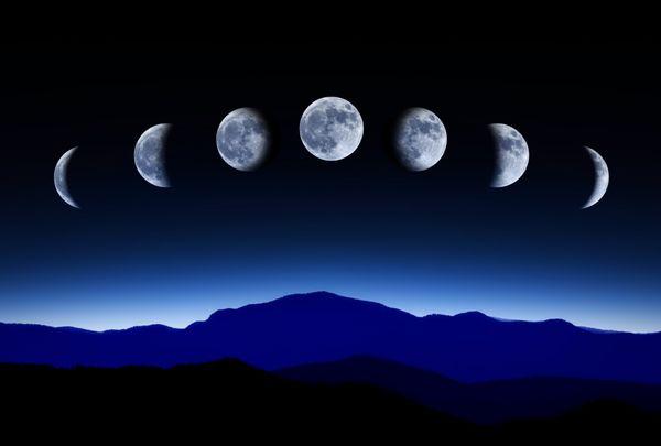 Рост растений зависит от лунной фазы