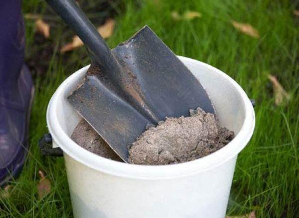 Нара нуждается в органике и минеральных элементах