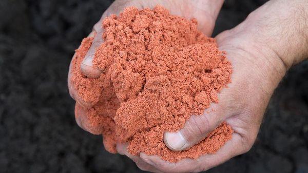 Применение калийных удобрений для растений