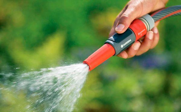 Смородина требует регулярного насыщения почвы влагой