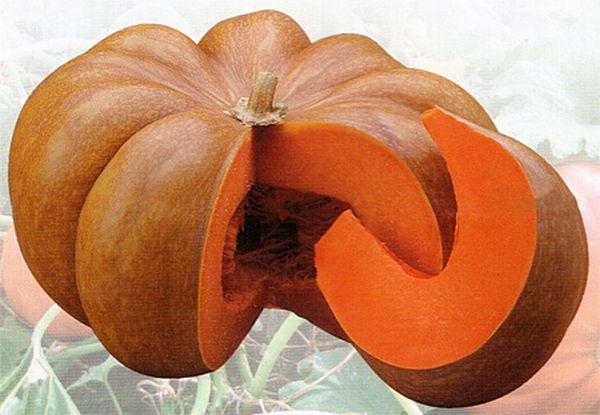Мускатная тыква имеет чудесный сладкий вкус