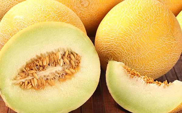 Дыня Гуляби весит около 4-8 кг