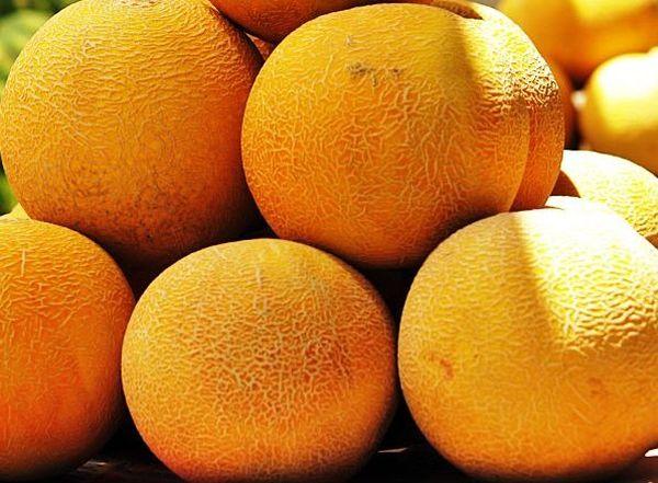 Спелая дыня покрыта ярко-желтой плотной шкуркой