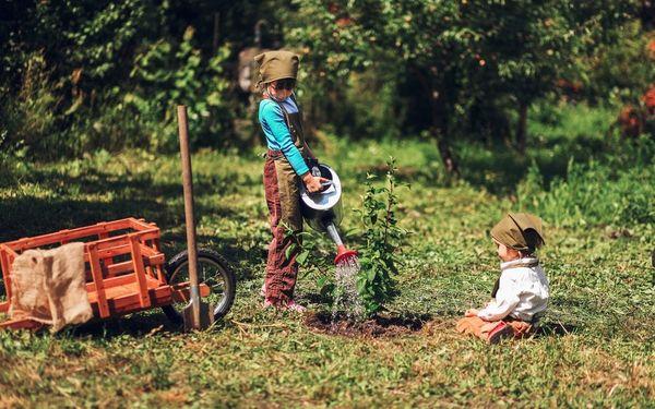 Антоновку садоводы высаживают до конца октября