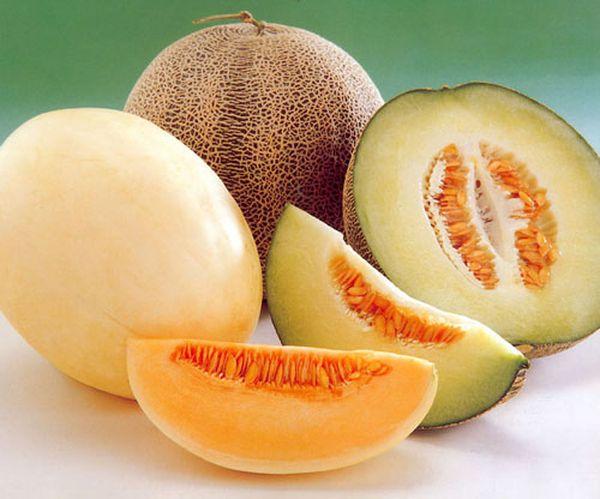 При надавливании на кожицу у спелых плодовона пружинит