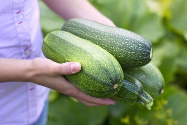 Для заготовок и консервации выбирают крупные плоды
