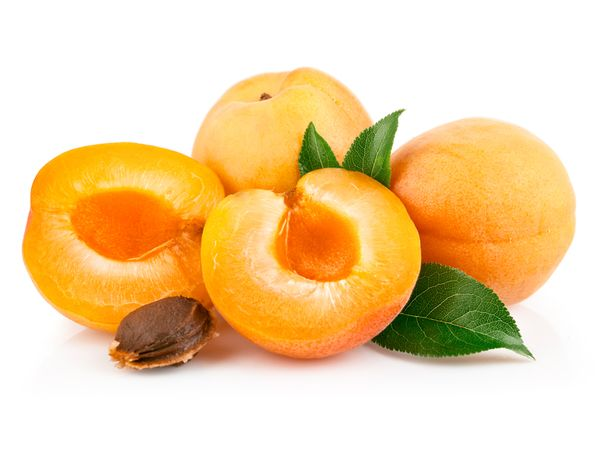 Абрикос – это фрукт