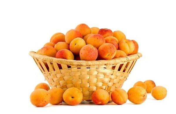 Многие любят абрикосы за их неповторимый вкус