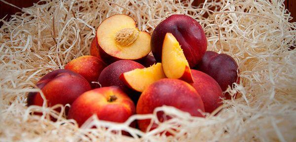 Нектарин - культура не самая простая в выращивании