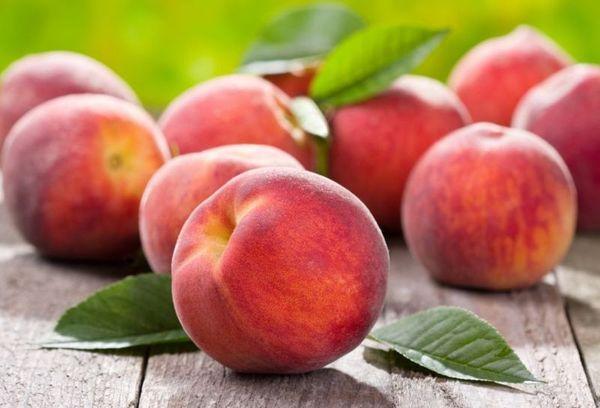 Плоды персика считаются одними из лучших среди фруктовых