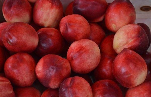 Яблочный вид нектаринов