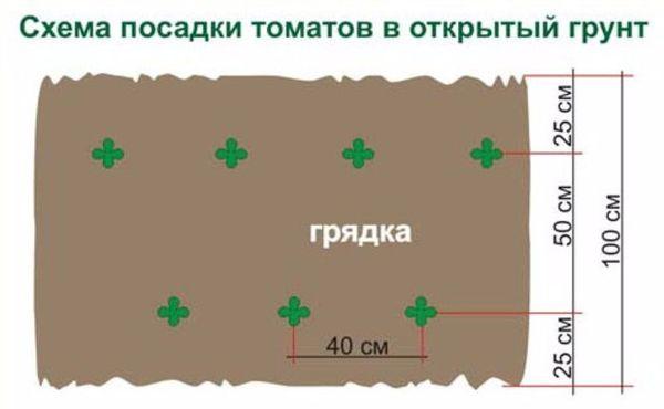 Стандартная схема посадки