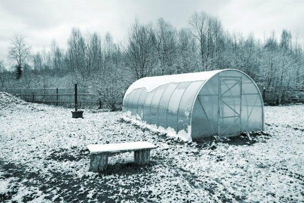Закрытая зимой теплица сулит немало хлопот
