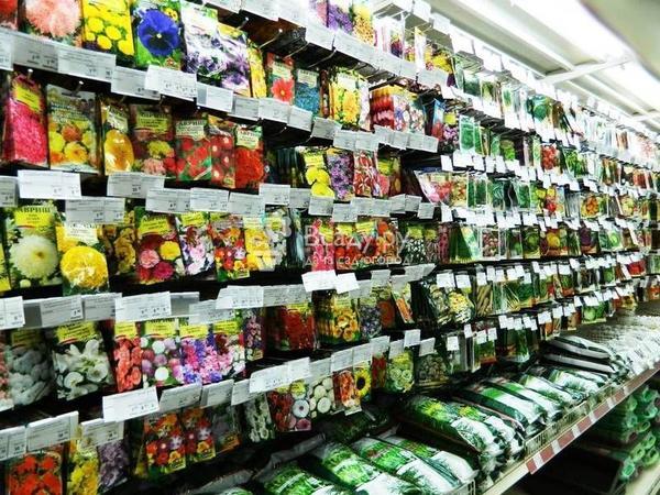 Покупать семена безопаснее в специализированном магазине