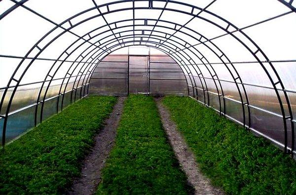 От выбора укрывного материала напрямую зависит урожай