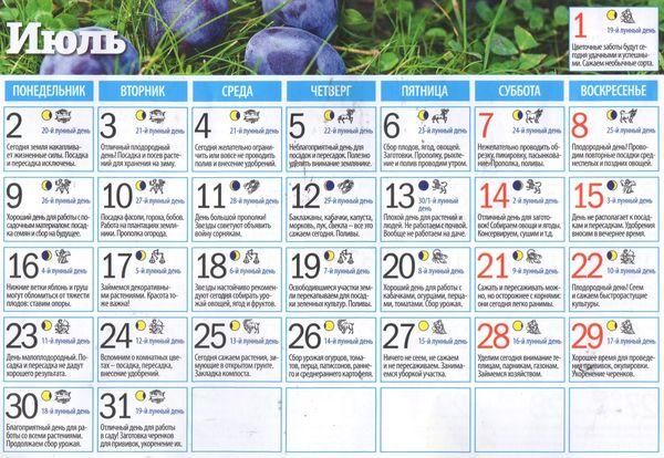 Лунный календарь садовода огородника на июль 2018