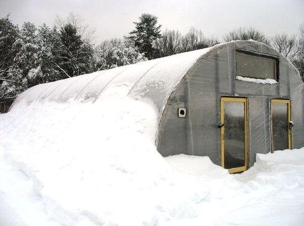 Содержание теплицы из поликарбоната зимой