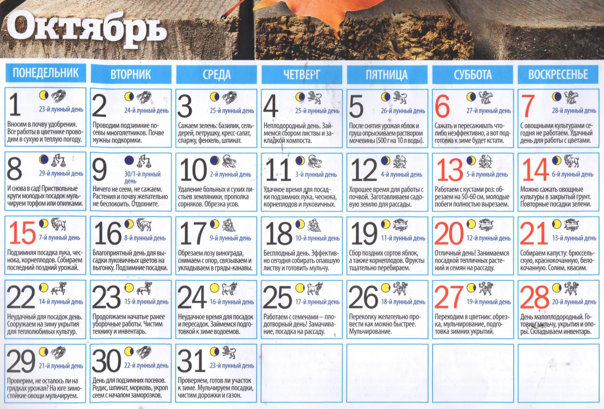Лунный календарь огородника на октябрь 2018 года