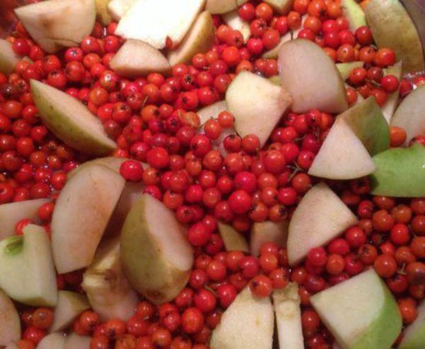 Варенье из красной рябины с яблоками