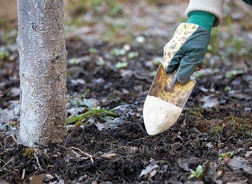 Удобрение калийно-фосфорными добавками