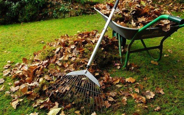 Уборка территории садового участка