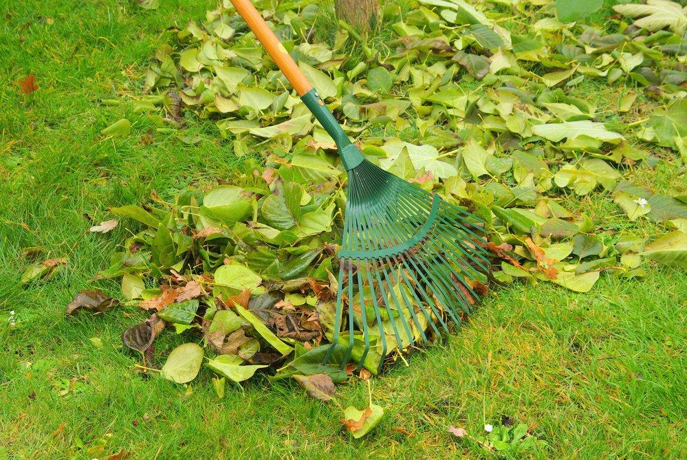 В неблагоприятные для посевов дни занимаются уборкой дачного участка